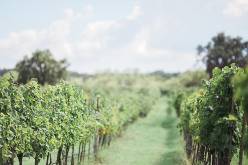 spicewood-vineyards-wedding-photographer-austin-photography-3-of-cups-floral-design-8